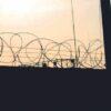 Gänget på Skänningeanstalten